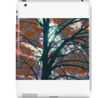 LIGHT PUZZLE iPad Case/Skin