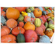 Pumpkins and Squashes Poster