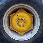 Tractor Tire by Timothy  Ruf