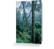 Winter Morning on Mount Dandenong Greeting Card