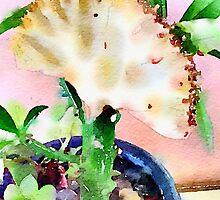 Unique Succulent by vanhagen