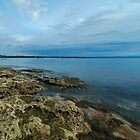 Jervis Bay, NSW by Malcolm Katon