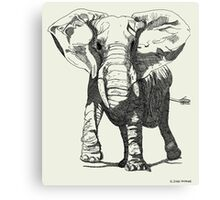 Elephant Pen and Ink Drawing Canvas Print