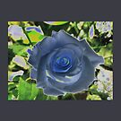 GREYROSE Blue by Aritheeagle