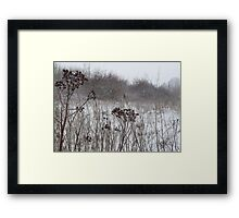 Wild Winter Framed Print