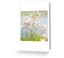 Dreamy Florals Pink and Blue Greeting Card