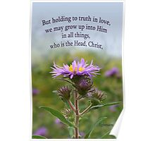 Holding to Truth in Love, Grow Up into Him ~ Eph 4:15 Poster
