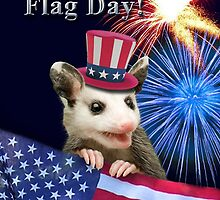 Flag Day Opossum by jkartlife