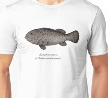 Grouper goliath Unisex T-Shirt
