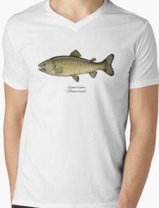Brown trout Mens V-Neck T-Shirt
