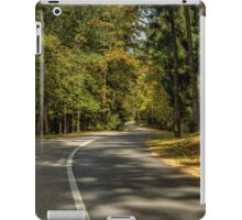 Road in forest iPad Case/Skin