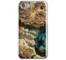 insert iPhone Case/Skin
