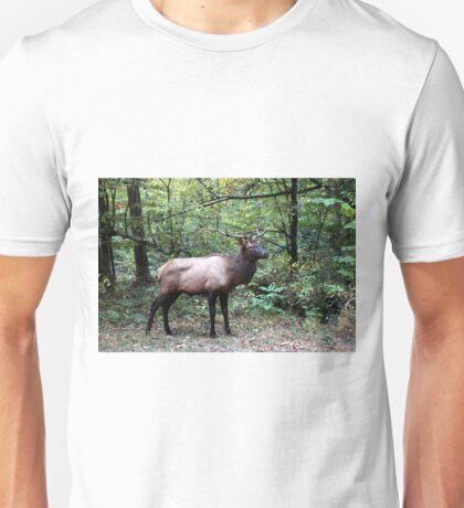 Bull Elk Unisex T-Shirt
