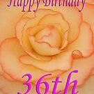 Happy 36th Birthday Flower by martinspixs