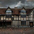 Shakespeare's Birthplace by Matt West