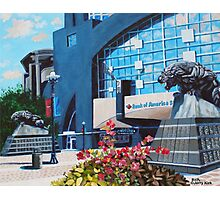 'PANTHERS STADIUM'  Photographic Print