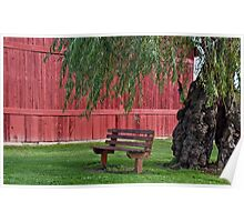 vacant bench under willow tree Poster