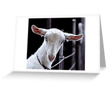 Goatic Beauty Greeting Card