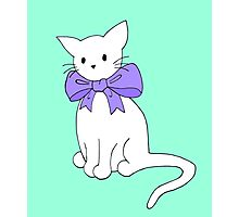 Cat with Purple Bow Photographic Print