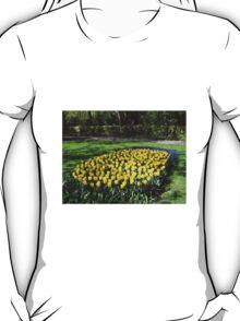 Bed of Yellow Tulips in the Keukenhof Gardens T-Shirt