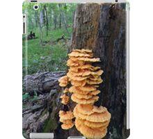 Yellow Shelf Mushrooms iPad Case/Skin