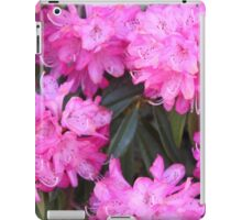 Pink Flowers Spring iPad Case/Skin