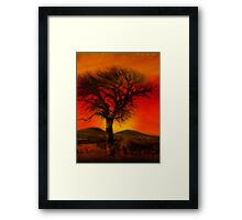 Oil Pastel Tree in Sunset (28,387) Framed Print