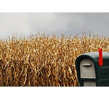 You've Got Mail... Photographic Print