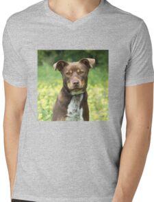 Jake Mens V-Neck T-Shirt