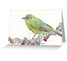 Cape White Eye (Witogie) Greeting Card