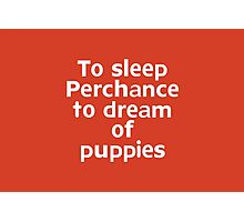 To sleep Perchance to dream of puppies Photographic Print