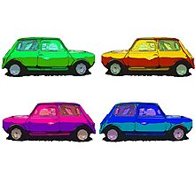 Many Minis Photographic Print