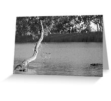 Gunbower Channel Greeting Card