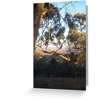 View from Horan's Track through the Murchison Gap Vic Aust Greeting Card