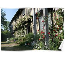 Tudor Rose Cottage Garden Poster