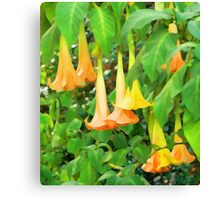 Trumpet Flower Abstract Canvas Print