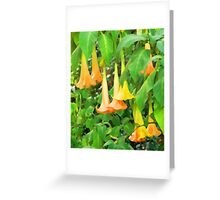 Trumpet Flower Abstract Greeting Card