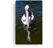 Pelican Surges Forward Canvas Print