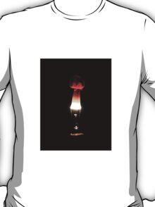 Fire & Ice series 12 T-Shirt