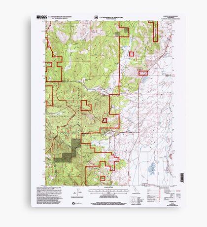 USGS TOPO Map California CA Calpine 100607 2000 24000 geo Canvas Print
