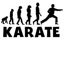 Karate Punch Evolution by kwg2200