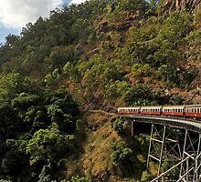 Karanda Railway,Far North Queensland. by Michael Crameri