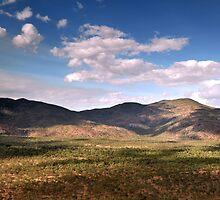 Mount Carbine near Cook town ,Far North Queensland. by Michael Crameri