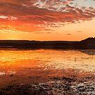 Lake Moondarra III by Stephen  Nicholson
