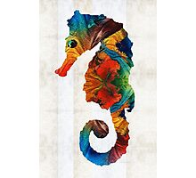 Colorful Seahorse Art by Sharon Cummings Photographic Print