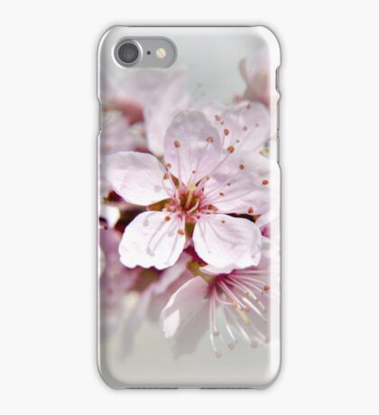 Blossom part 1 iPhone Case/Skin