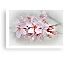 Blossom part 1 Canvas Print
