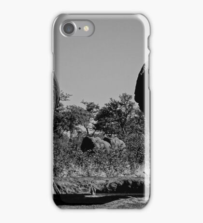 Elephant Butts iPhone Case/Skin