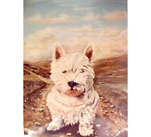 HAMISH THE SCOTTISH KERN Photographic Print