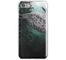 SEAL IN THE KELP iPhone Case/Skin